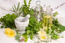 Tratament Naturist Hemoroizi